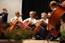 Ensemble-Mini-Strings-2