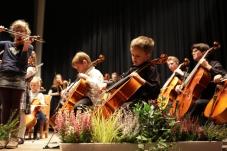 Ensemble-Mini-Strings-3